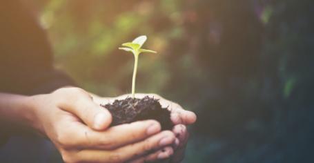 Green management en entreprise