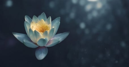 meditation-travail-exercice.jpg