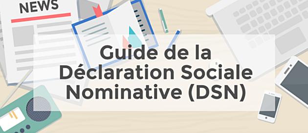 Guide DSN