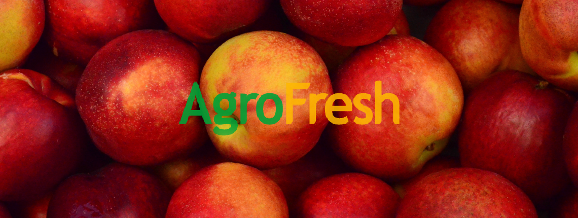 temoignages_agrofresh_gestion_conges.png